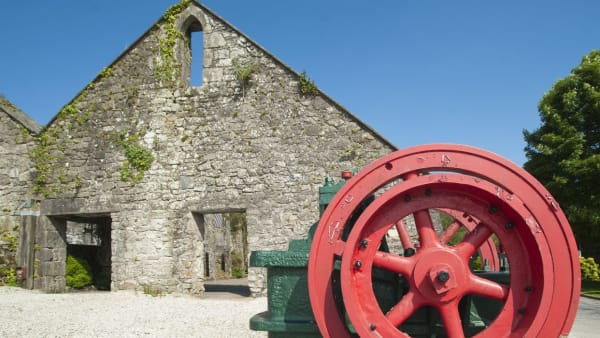 Wheal Martyn Clay Works reopens - a safe cultural retreat
